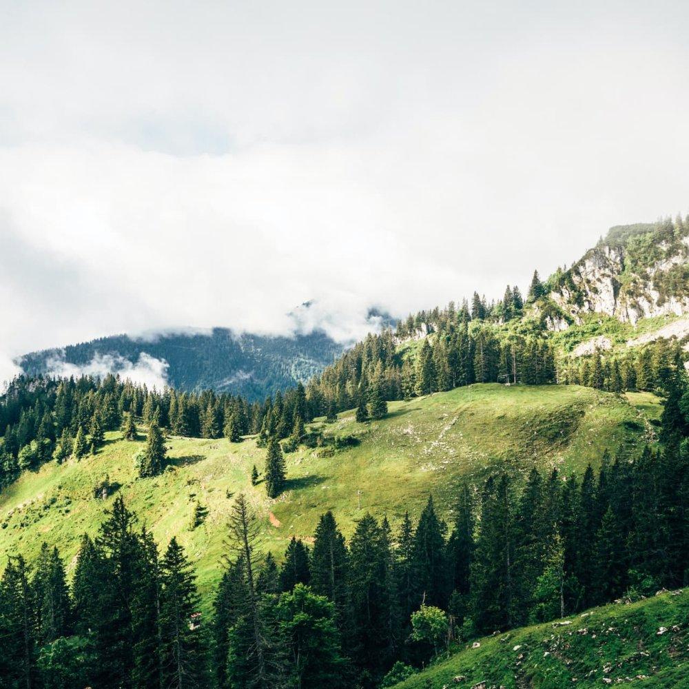 Berg-Macher Berglandschaft Stephan Wieser