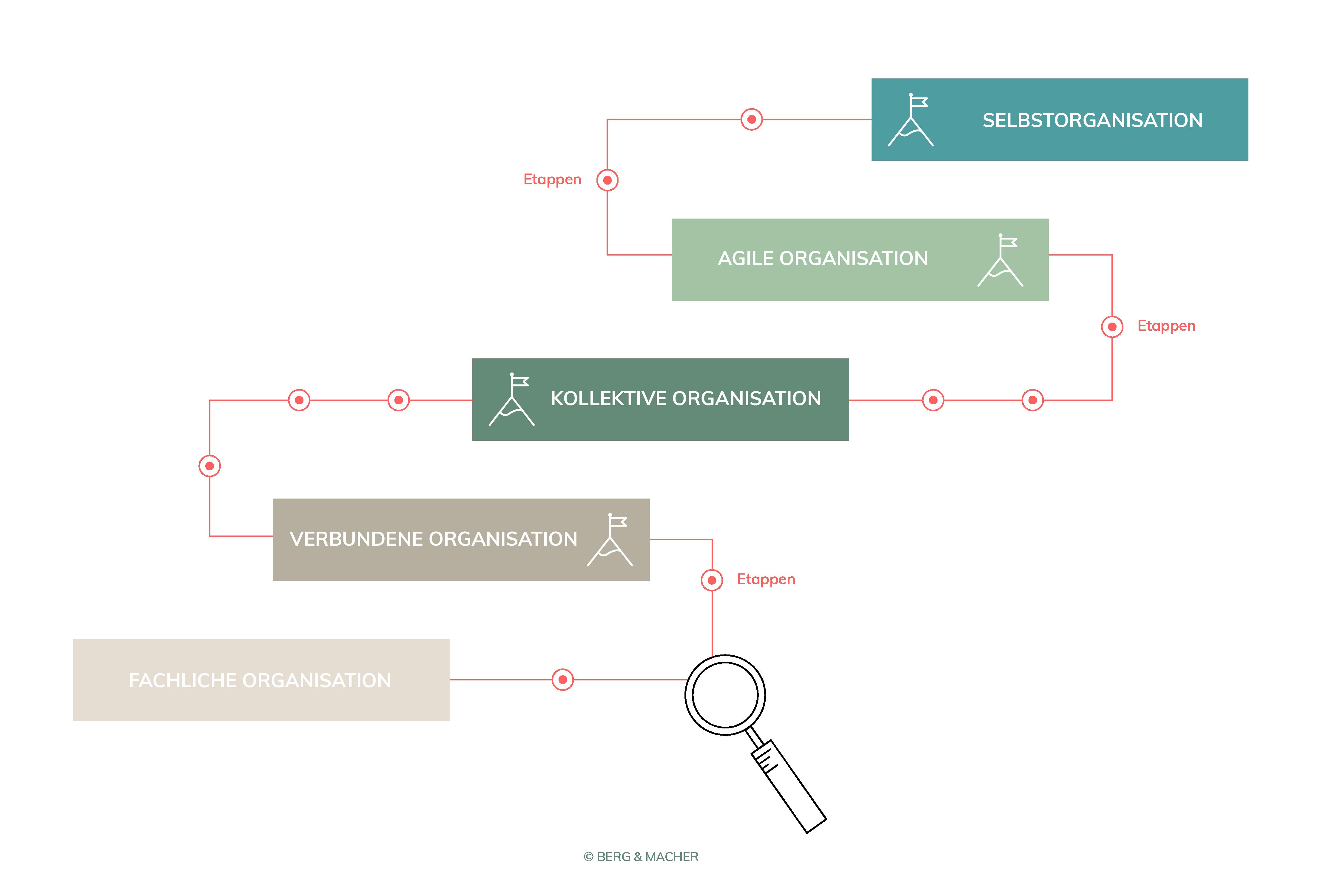 Berg-Macher-Teamentwicklung-Organisations_stufen_Modell