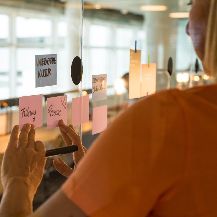 Berg & Macher®-Methode Organisationsentwicklung Umsetzung