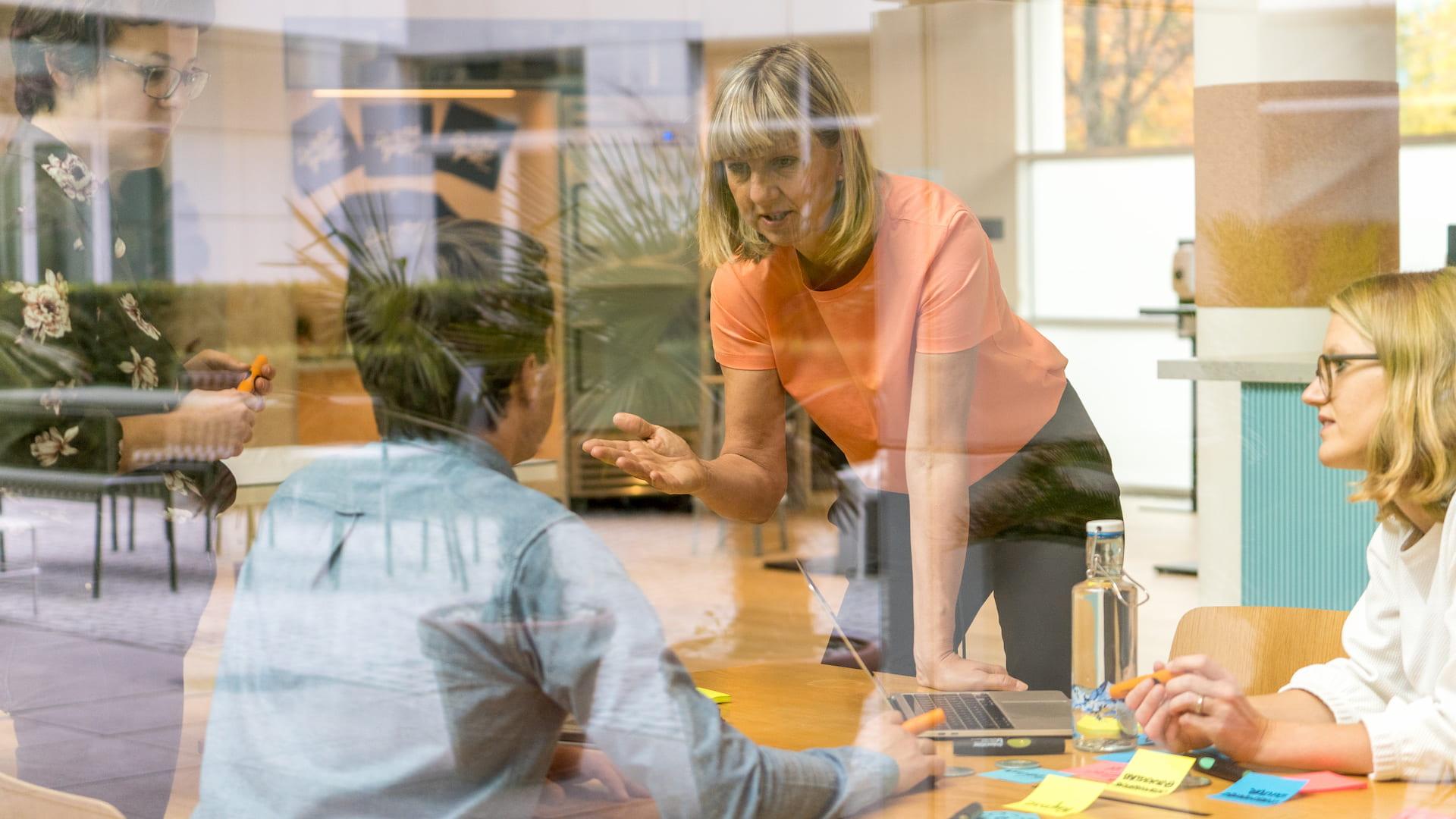 Berg-Macher-Organisationsentwicklung-Unternehmenskultur