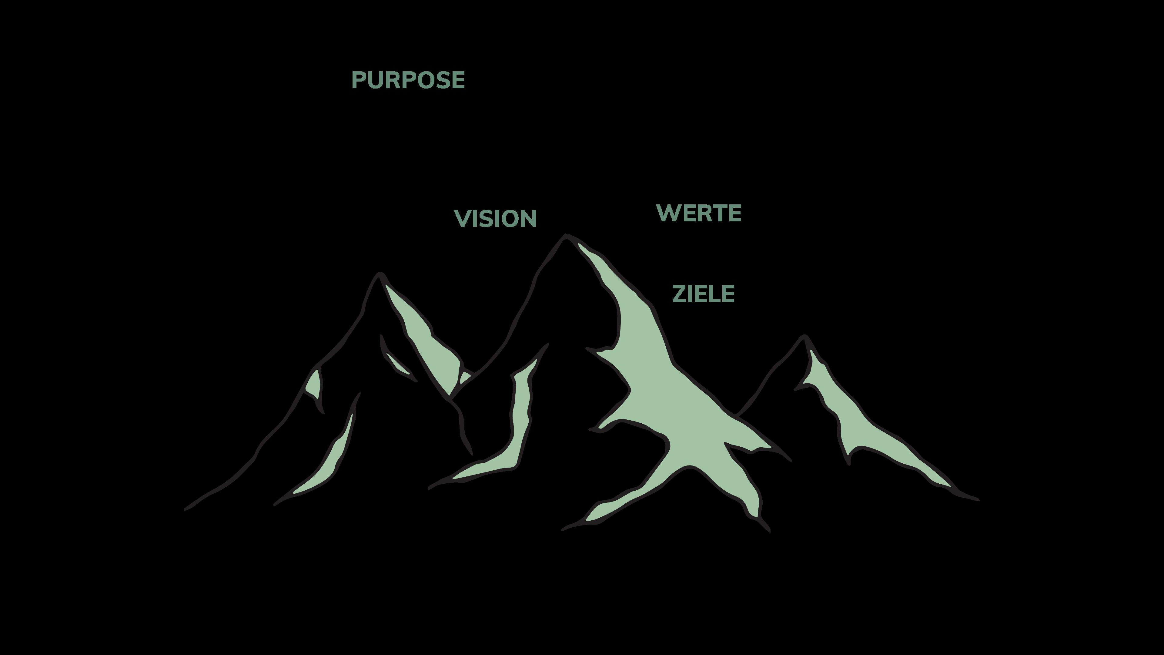 Agile Organisation Purpose Vision Werte