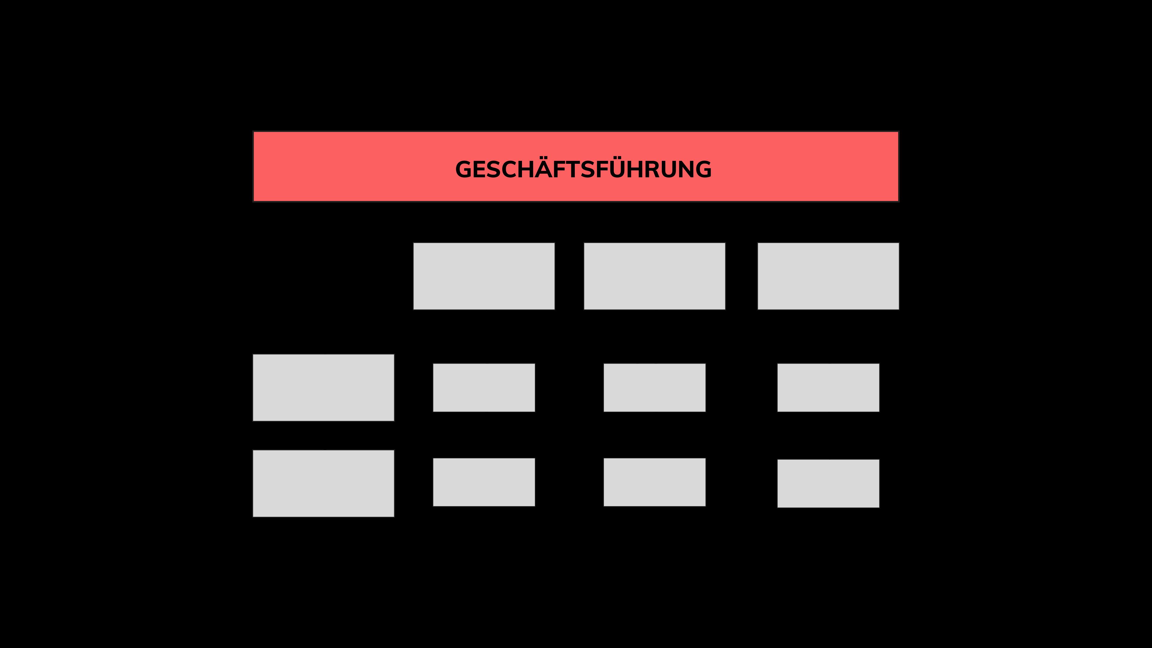 Organisationsformen Matrix Organisation